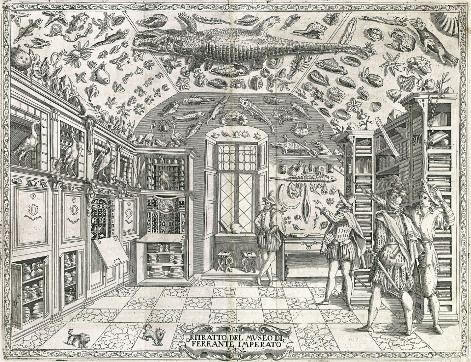 Cabinet of curiosities: Ferrante Imperato, Naples,  1599