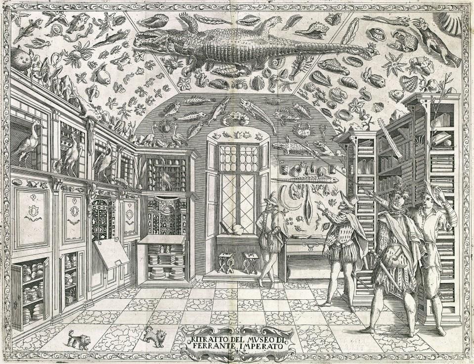 Cabinet of curiosities: Ferrante Imperato, Naples,  1599